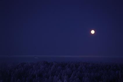 Gelido inverno via www.rovaniemi.fi